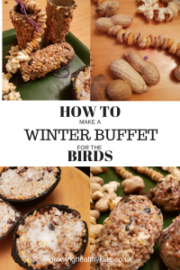 HOW TO MAKE A WINTER BUFFET FOR BIRDS