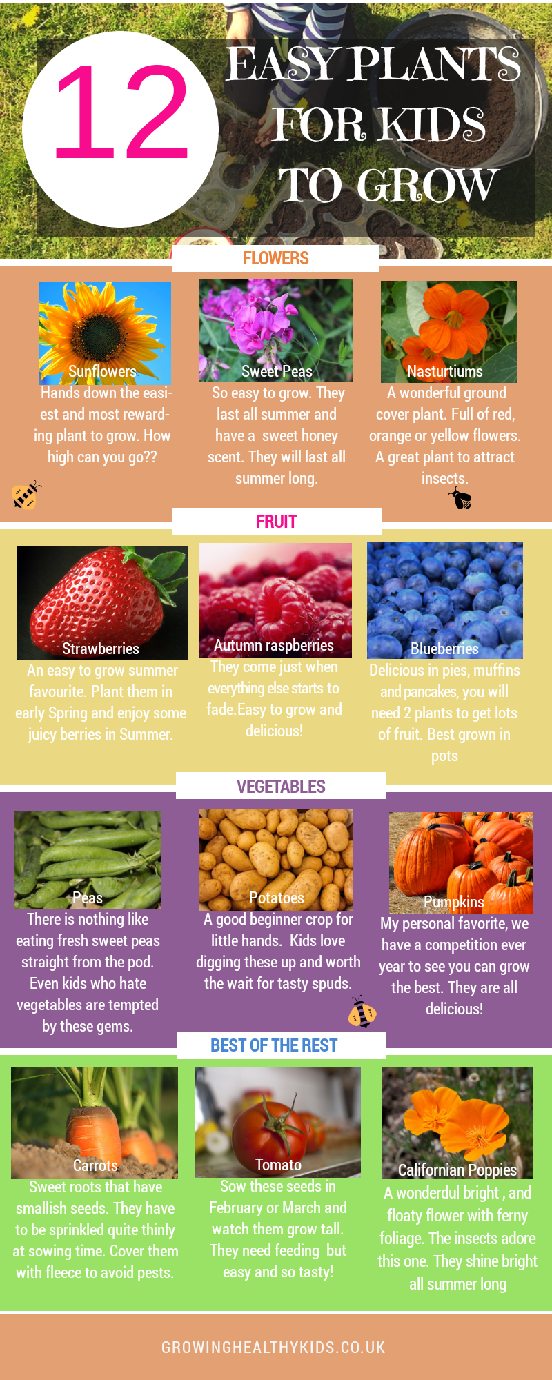 12 Vegetables To Plant In August Zone 9: 12 EASY PLANTS FOR KIDS TO GROW, Vegetables, Fruit
