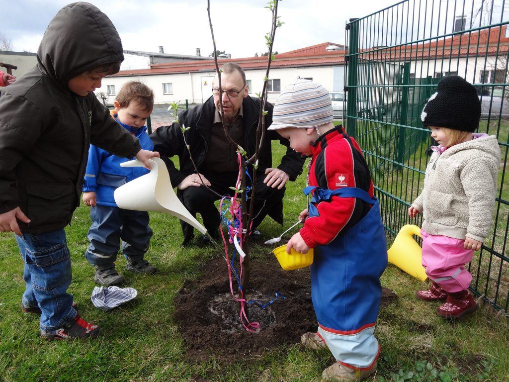 HOW TO GROW FRUIT WITH KIDS