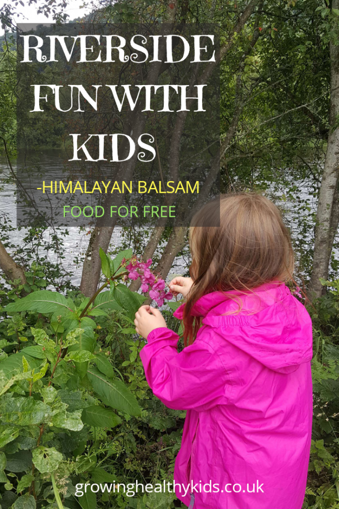 Riverside fun with kids-food for free