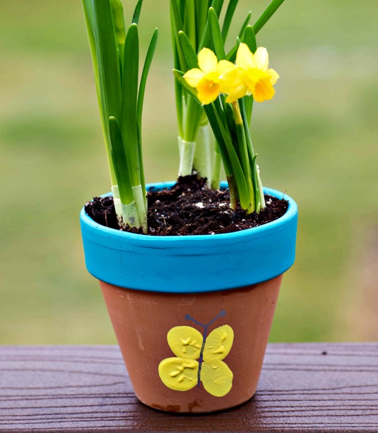 Autumn is the perfect time to plant bulbs in your kids garden.