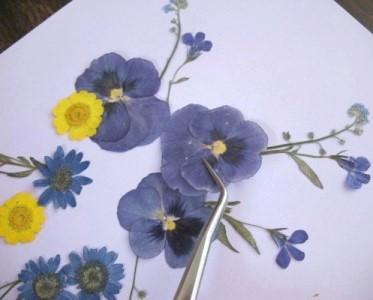 Prressed flower garden craft. Find out how to press your own flowers to make diy art. Then you could use them for lots of ideas, put them in a frame or a scrapbook. You could also make your own cards. A great craft for Spring.