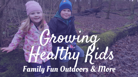 Family Fun Outdoors And More