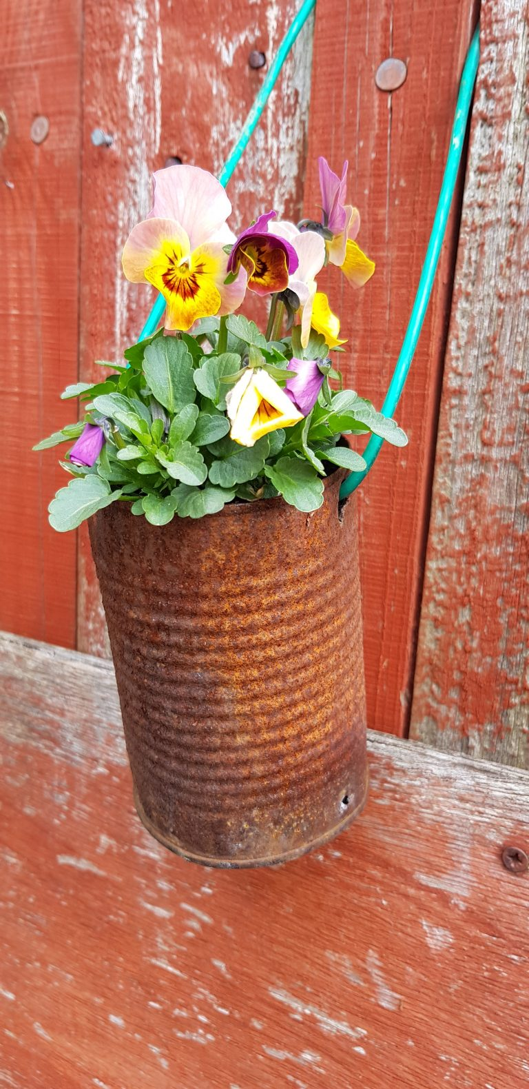 Garden crafts for kids. Tin can flower pot. Give these diy planters ago made from metal buckets or cans. Use them for ideas like floral arrangements, plants and indoor herbs. So simple but so cute.