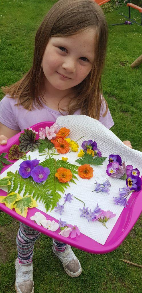 summer flower pressing