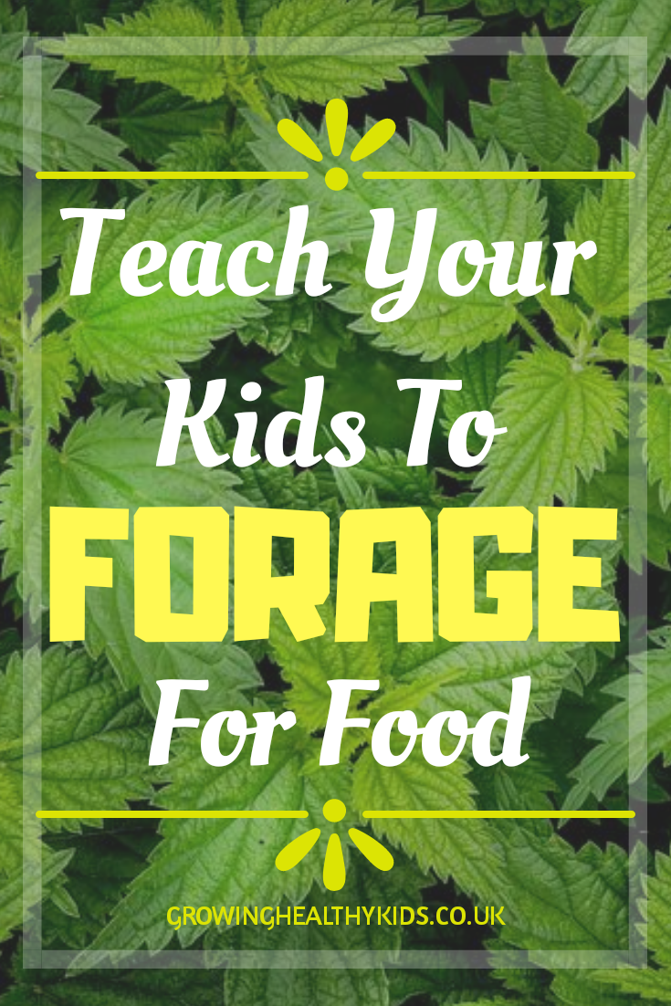 Teach kids to forage