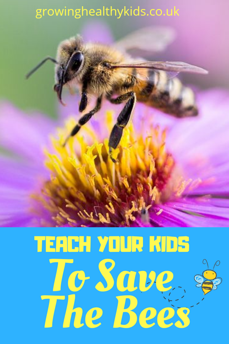 Ways to save the bees