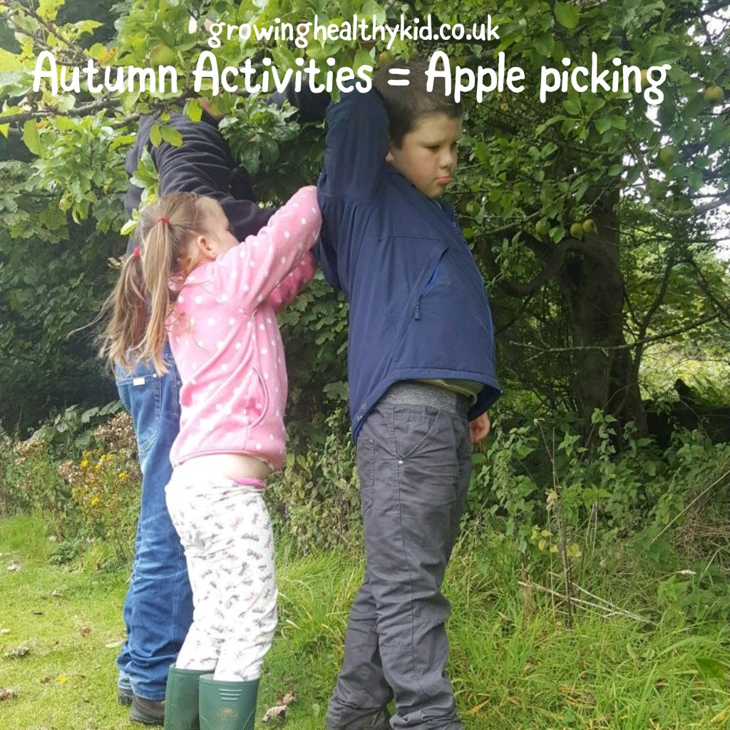 Picking apples with kids is a simple activity to help celebrate Fall. The harvested apples can be used for so many ideas, like snacks or arts and crafts.