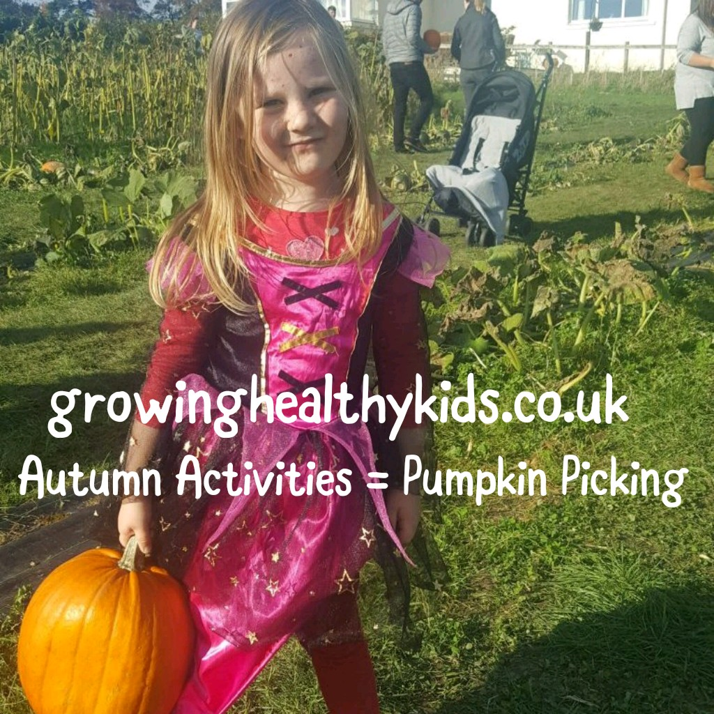Pumpkin picking with your kids, is a fantastic activity for Fall. There is lots of ways to use your picked pumpkins. From carving or painting them for Halloween to trying so many different recipes for pie, soup, muffins and so many more.