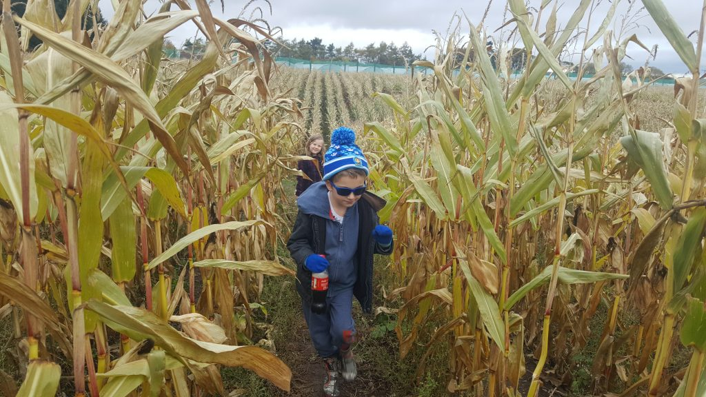Autumn activities to do with your kids