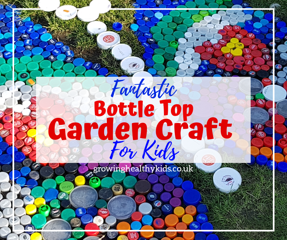 plastic bottle garden craft