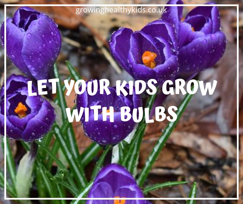 Help Your Kids Grow Seeds And Bulbs Growing Healthy Kids