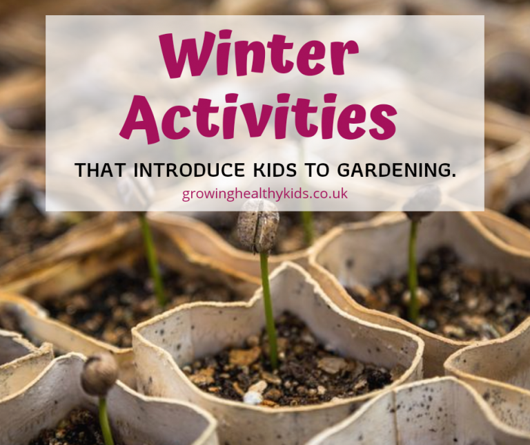 Winter activities that will give kids the bug for gardening