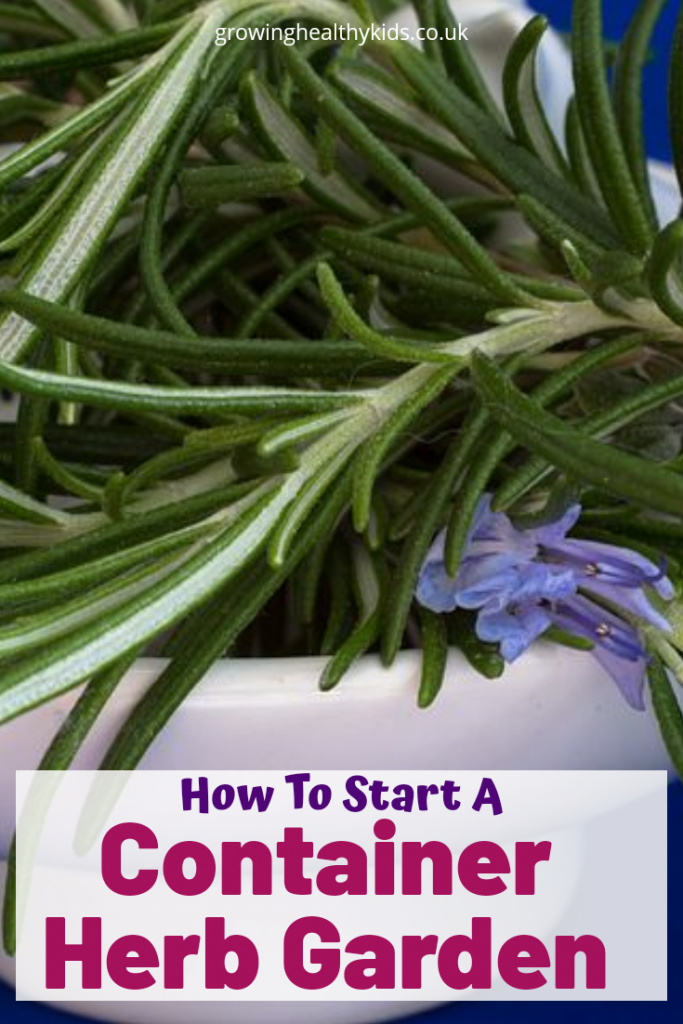 Starting a herb garden is one of the easiest ways to introduce yourself and your family into gardening and growing your own food for your family