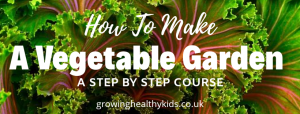 vegetable gardening for beginner's