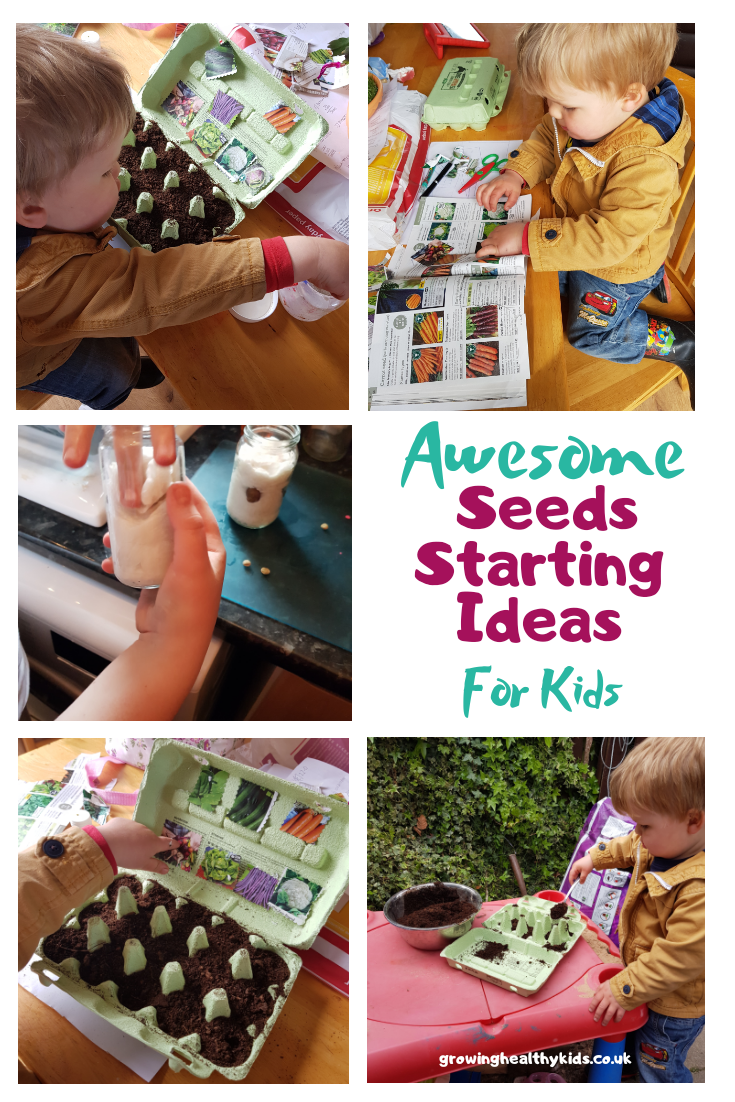 How to grow seed activities for kids. Brilliant tips for beginners on sowing seed indoors, unusual containers save space too.