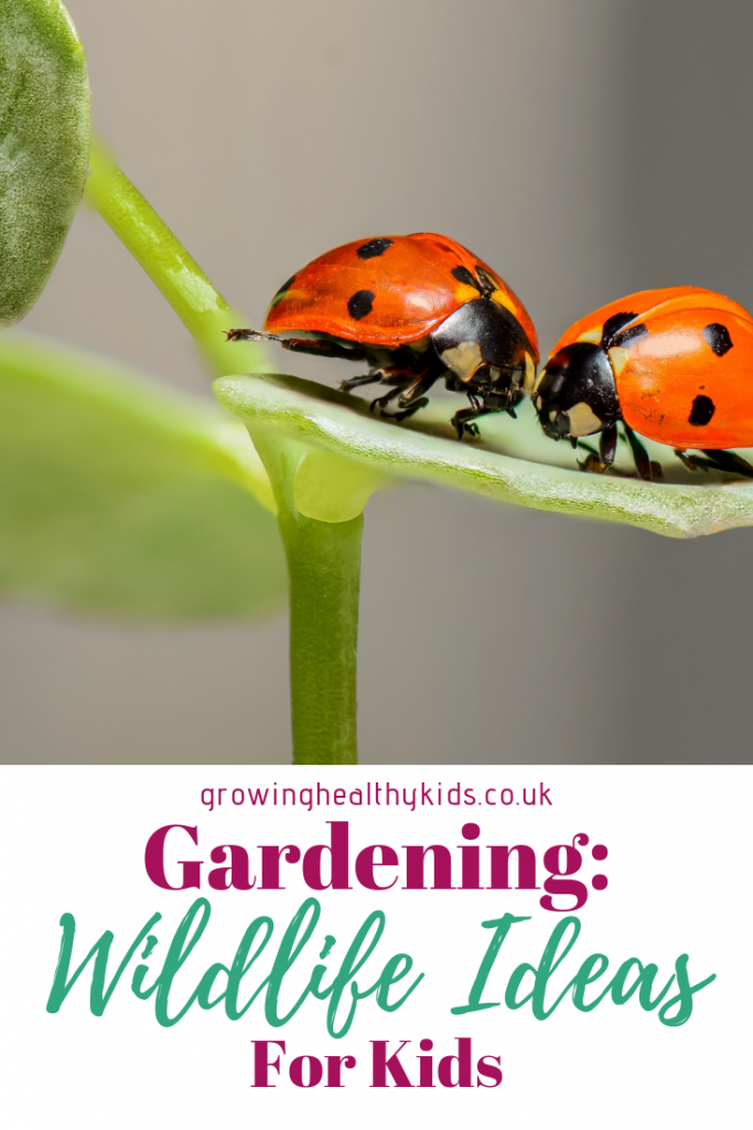Wildlife garden ideas and tips to try with kids.  Learn how to make a wildlife garden pond, a habitat for bees, lady bugs, backyard birds and wildlife with your kids. Simple ideas for providing habitats, food, shelter and protection like putting up nesting boxes or adding an insect hotel. There's something to do whether its spring summer or Autumn