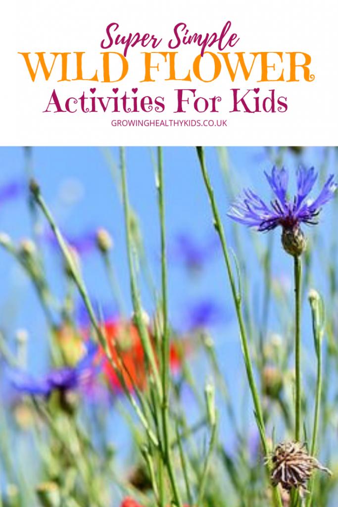 Wildflower fun activities.Picture of wildflowers