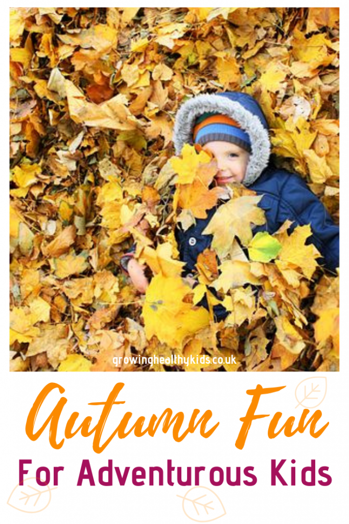 Autumn fun in the leaves