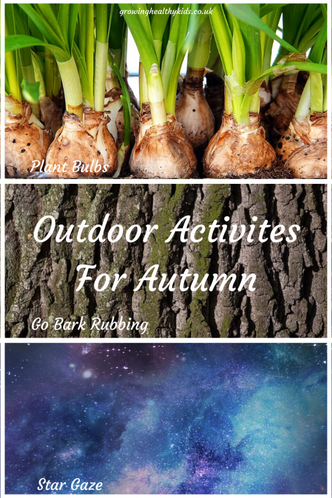 Fun activities for autumn to try