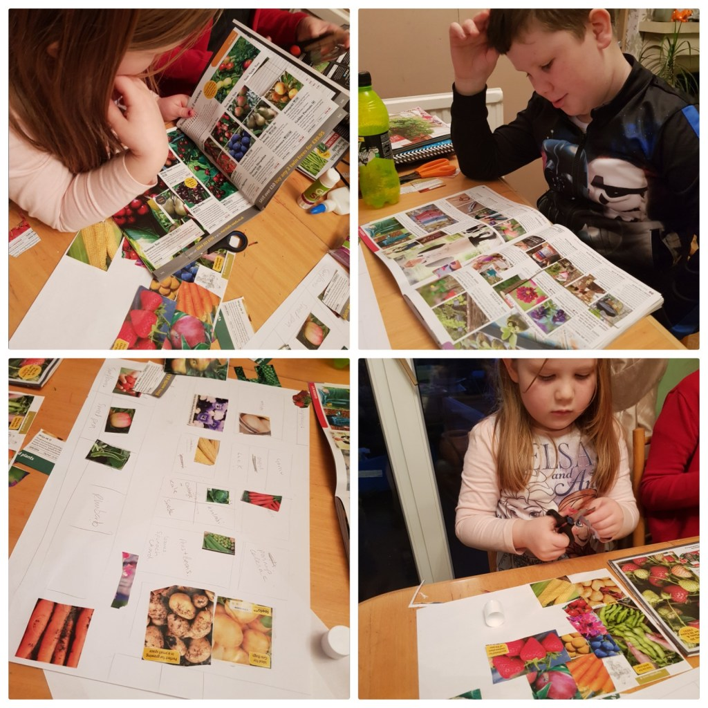 Kids cutting out pictures planning a winter garden