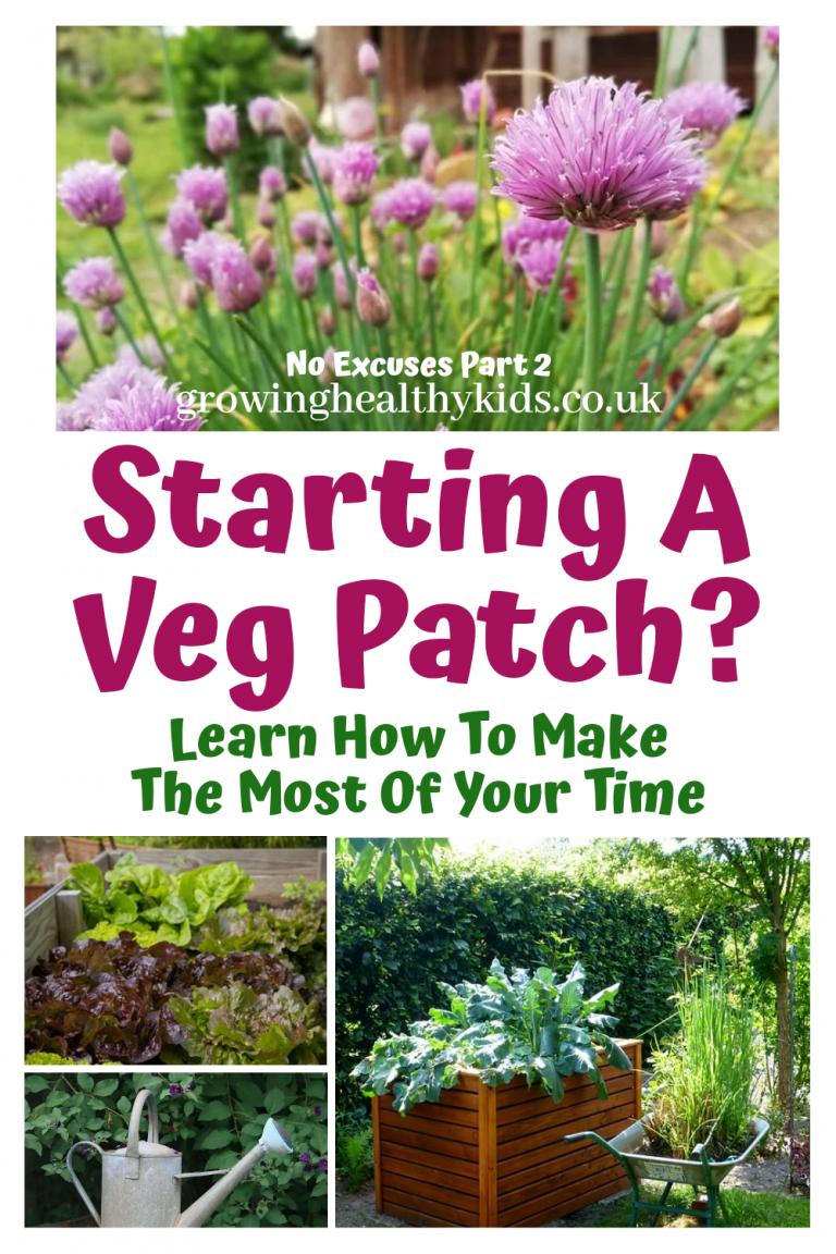 start a veg patch, time saving tips