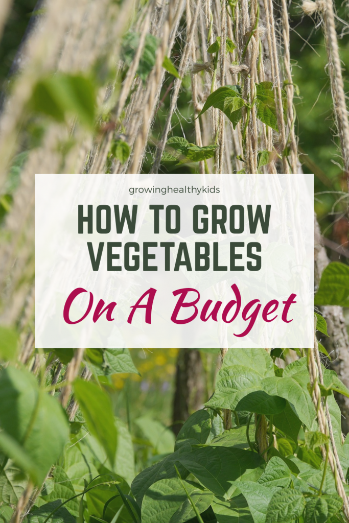 Vegetable garden on a budget