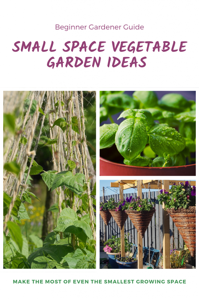 Make the most of every small growing space in your garden  with these simple tips and use every patch to its fullest. try verticle growing, companion planting and even successional Crops