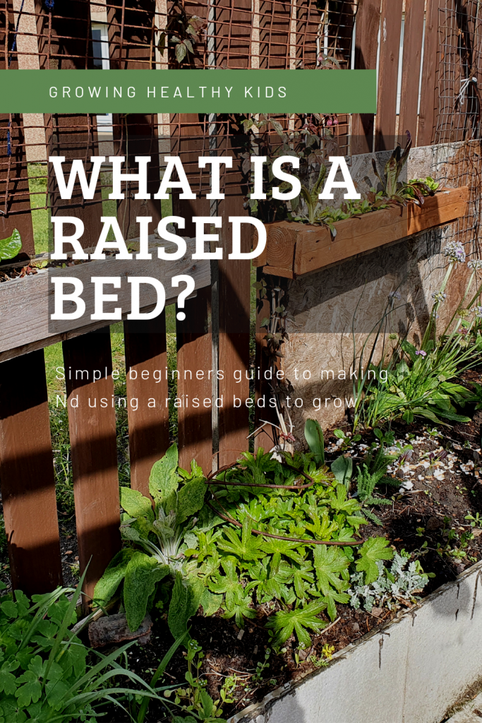 Raised bed planter ideas and tips for total beginners